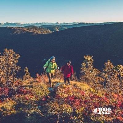 1000 MILE ULTIMATE LIGHTWEIGHT Walk Sokker